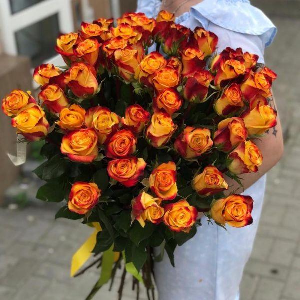 Роза Tutti Frutti
