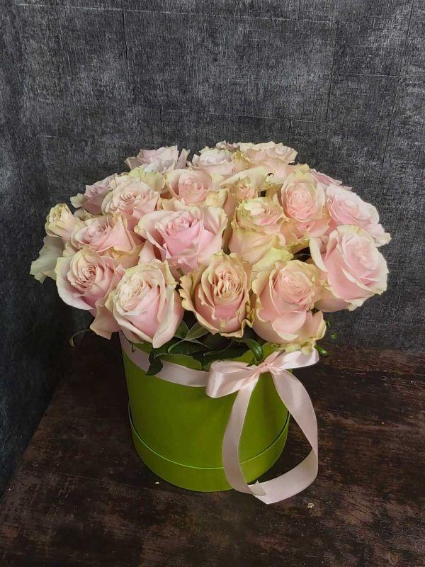 Роза в коробке PINK MONDIAL