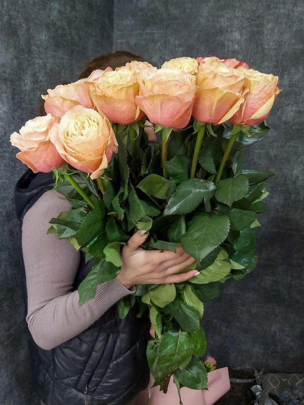 Ораньжевые розы