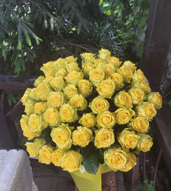 51 жёлтая роза