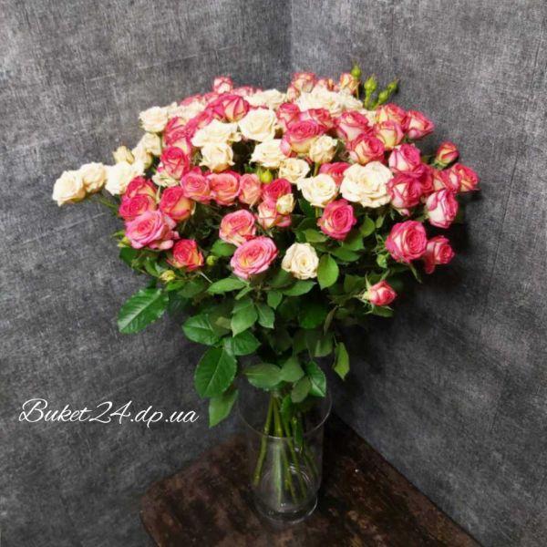Роза спрей, кустовая роза