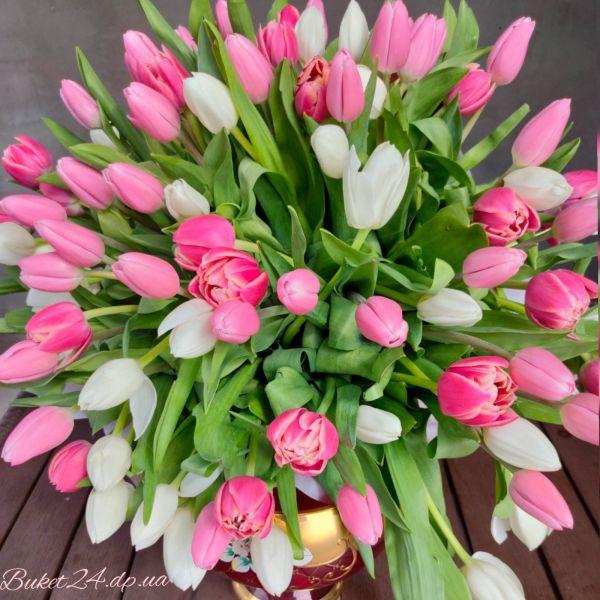 """101 тюльпан """"Нежность"""""""