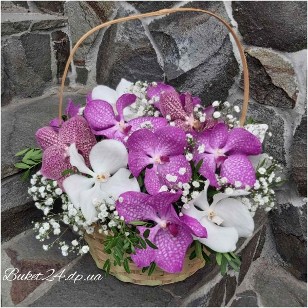 Корзина с орхидеями «Король победы»